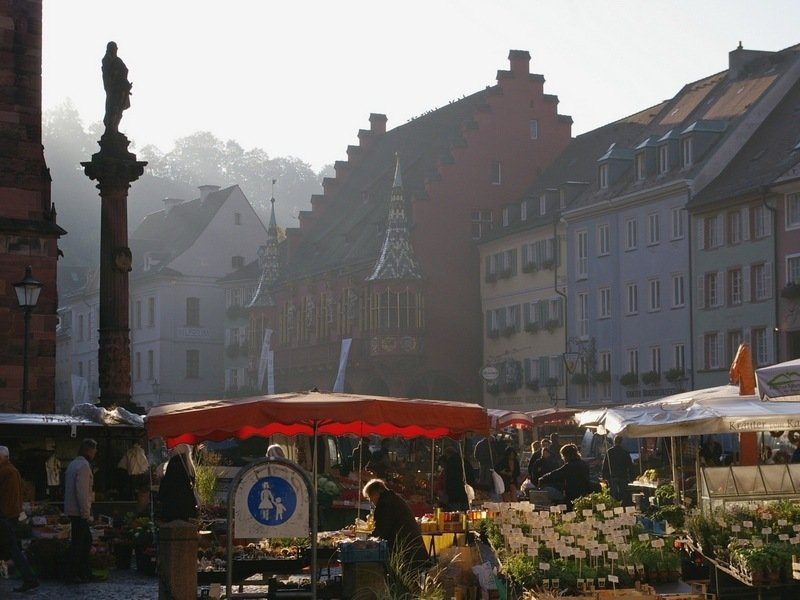 1 week itinerary in the Black Forest - Freiburg weekly market