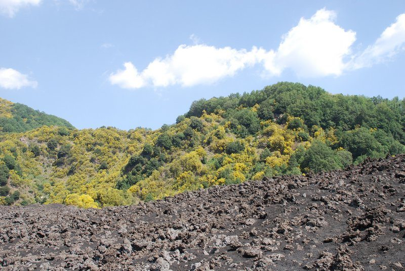 Mt. Etna hiking tour review Sicily