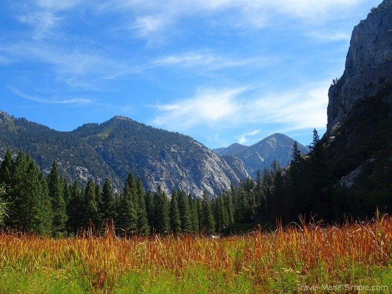 best western US road trip itinerary - Kings Canyon meadow